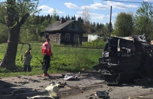 Восемь машин пострадали при столкновении двух лесовозов вЛенобласти