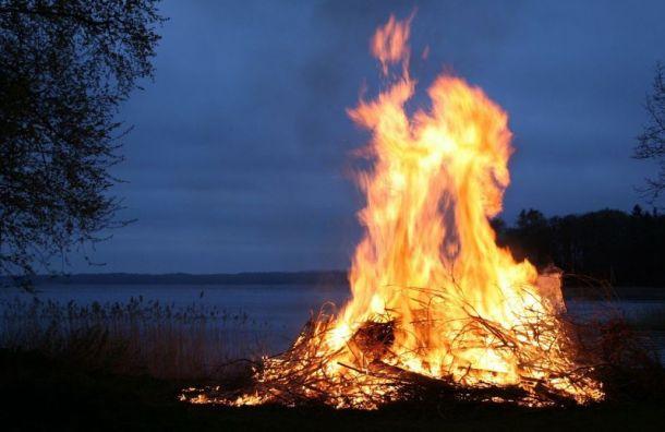 Опасность лесных пожаров возрастает вПетербурге