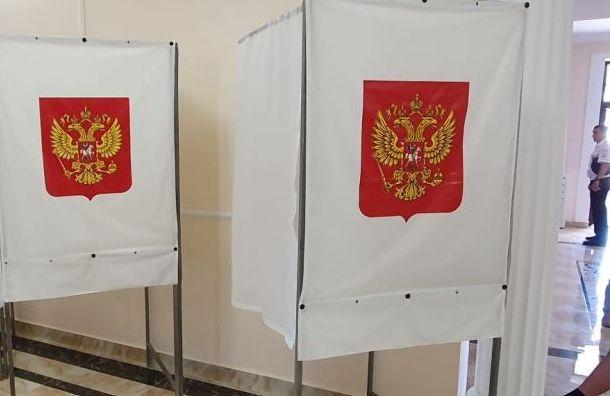 Попоправкам вКонституцию проголосовали уже 1,1 млн жителей Петербурга