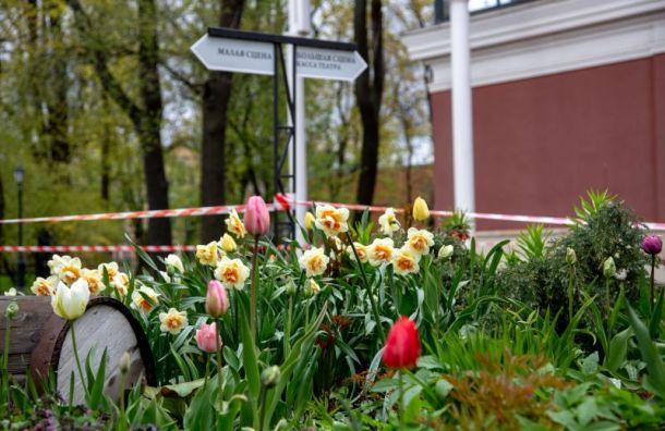 Измайловский сад откроется с1июля