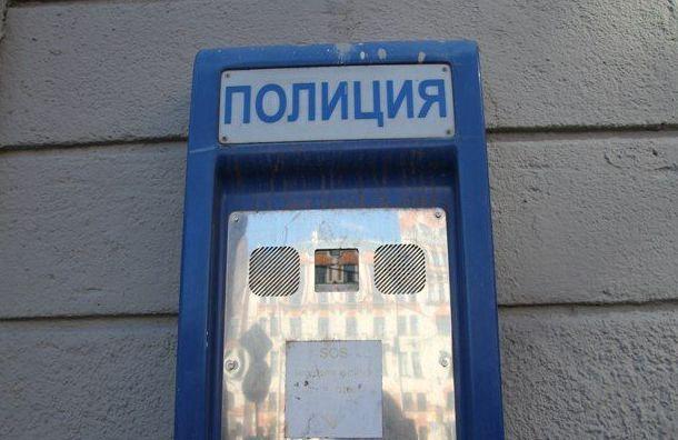 Икону Богородицы похитили изквартиры наулице Крупской