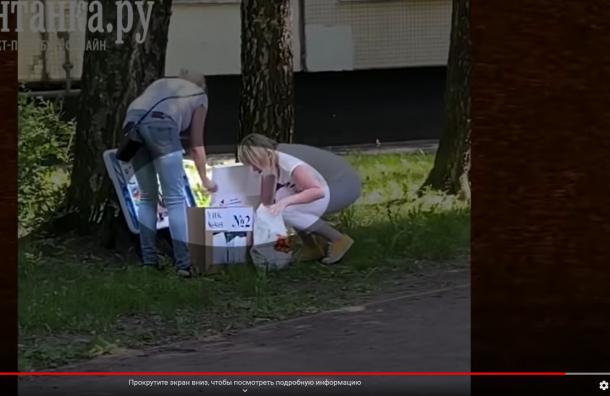 Двух членов УИК вПетербурге отстранили после видео «вбросов»