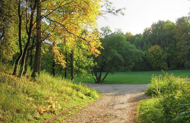 Парки идетские площадки вПетербурге стали доступны для посещений