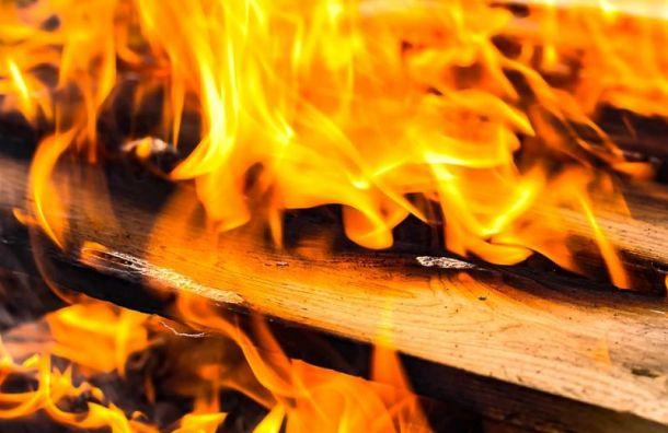 Два человека погибли впожаре наГостилицком шоссе