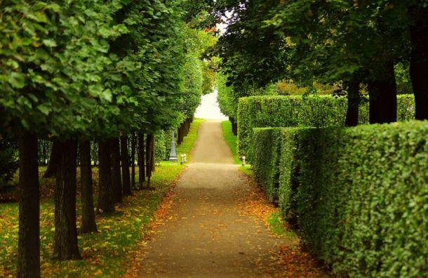 Музеи имузеи-заповедники откроют свои парки с16июня