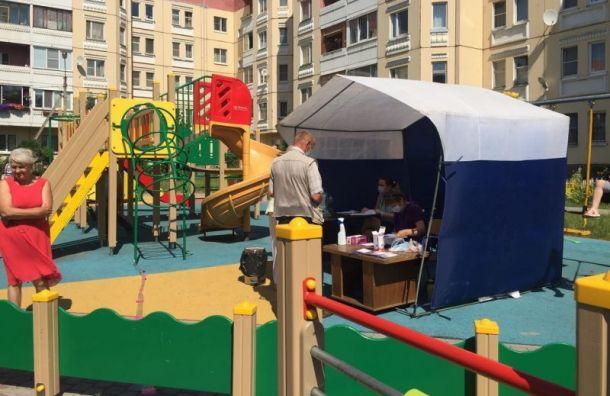 Качели вДетскосельском заблокировали из-за голосования попоправкам