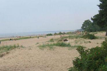 Пляжи Курортного района проверили наготовность кприему петербуржцев