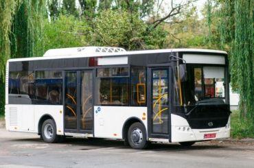 Частных перевозчиков вПетербурге обяжут закупить 2,5 тысячи низкопольных автобусов