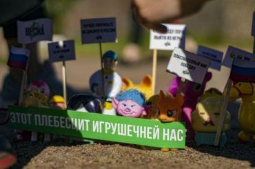 Петербургская полиция пресекла игрушечный протест