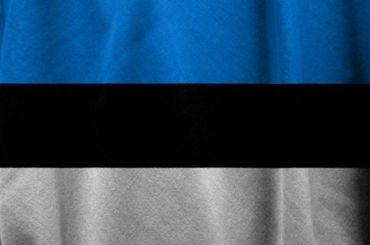 Петербуржцам придется ждать визу вЭстонию до1июля