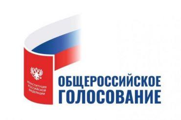 ЦИК предложил упростить порядок общероссийского голосования поКонституции