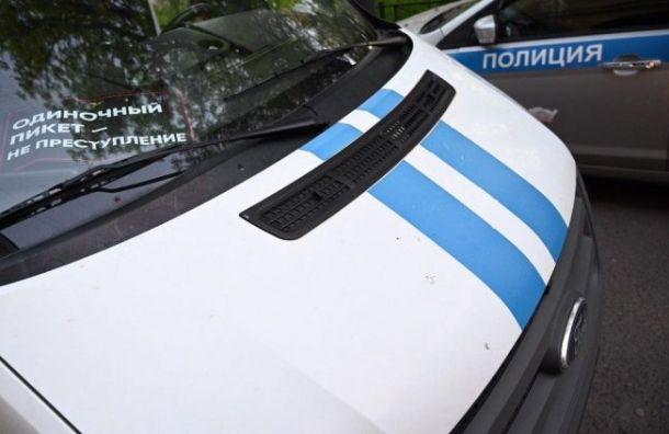 Петербургского активиста задержали около Александринского театра
