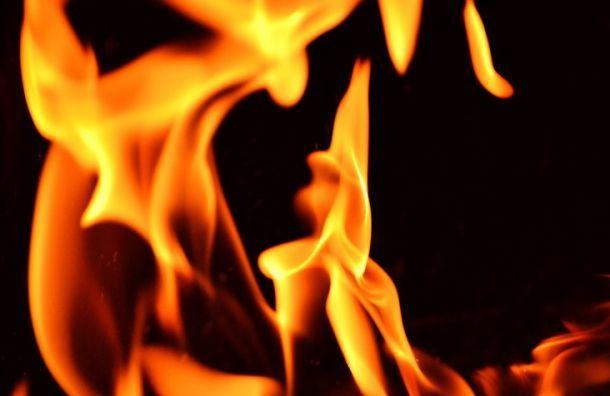При пожаре наМалоохтинском погиб человек