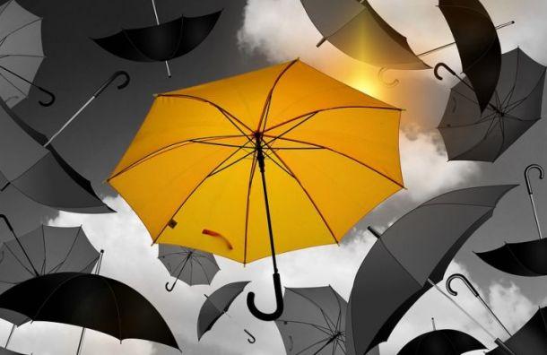 Воскресенье вПетербурге будет дождливым ипрохладным