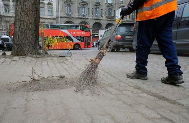 Два района Петербурга остались без уборки