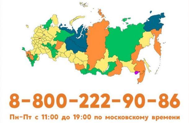 «Добродомик» запустил бесплатную горячую линию для пожилых россиян