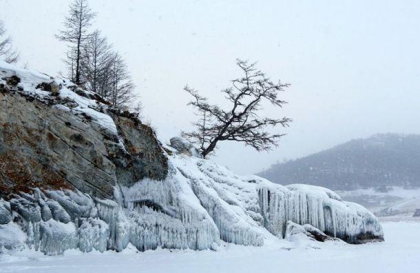 Путин разрешил вырубать леса около Байкала для расширения дорог