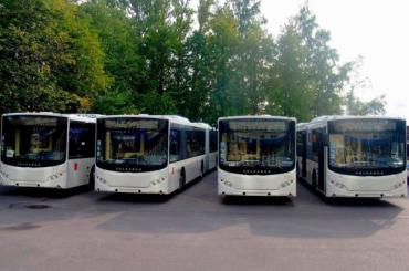 Застрявших в московских обсерваторах петербуржцев вернет домой