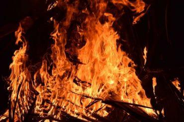 Насевере Петербурга впожаре погибла пенсионерка