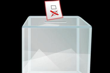 Запоправки вКонституцию вЛенобласти проголосовали 74,71% избирателей