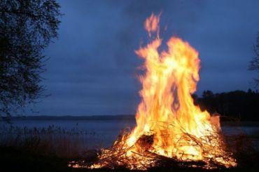 Более 240 лесных пожаров произошло вЛенобласти залето
