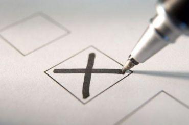 Более 97% избирателей проголосовали научастке вцентре Петербурга