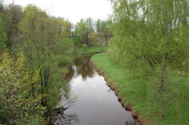 Коммунальщиков Ленобласти оштрафовали загрязные стоки вреку Охта