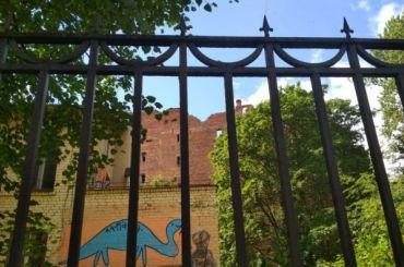 Большая Пушкарская хочет вдетский сад Эйфмана