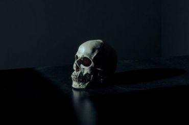 Связанный скелет обнаружили натерритории храма вЛомоносовском районе