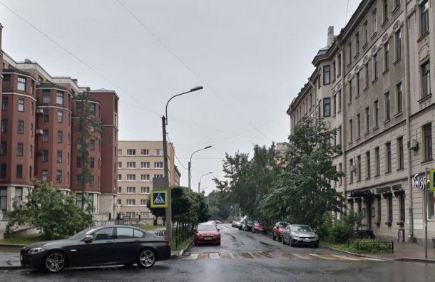 Дожди ипорывистый ветер испортят петербуржцам начало рабочей недели