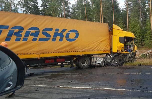 Девочка скончалась вжутком ДТП cгрузовиком натрассе «Скандинавия»