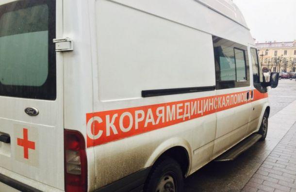 Петербургский кладовщик убил 55-летнюю возлюбленную вовремя секса