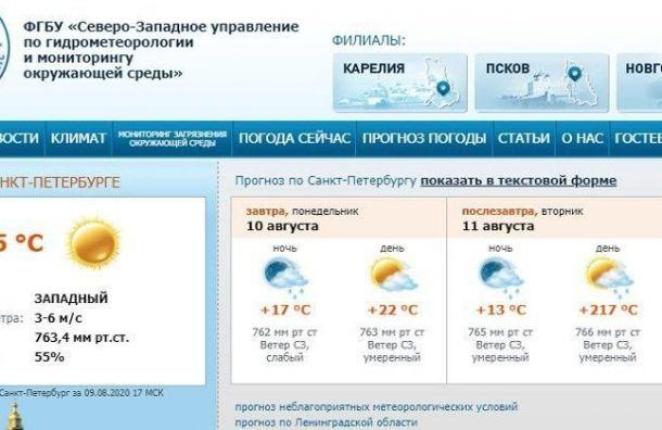 Апокалипсис поошибке: Петербургу пообещали +217 градусов жары