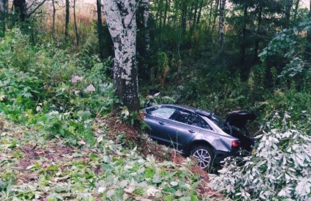 Второй засутки автомобиль улетел вкювет вТихвинском районе