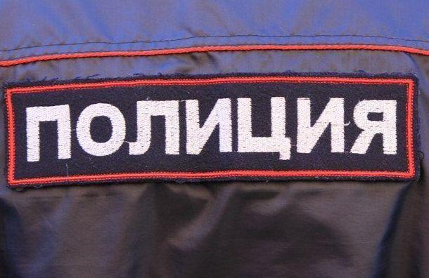 Пьяная девушка ударила полицейского ваэропорту Пулково