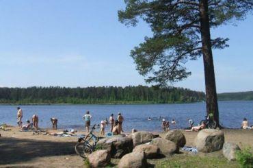 Берег заказника «Щучье озеро» вКомарово хотят застроить гостиницами