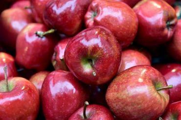 УФАС нашел причину подорожания яблок вПетербурге