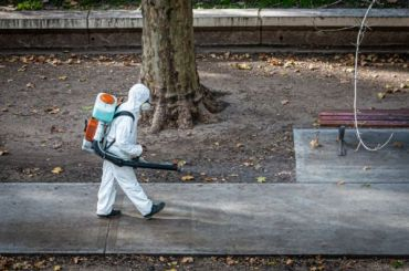 Петербург занимает первое место вРоссии посуточной смертности откоронавируса