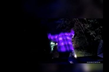Лежавший надороге хулиган напрыгнул наполицейский автомобиль