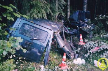 Автомобиль сдвумя детьми вылетел вкювет вТихвинском районе