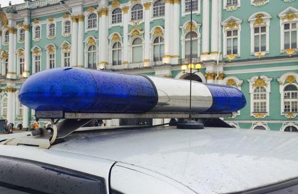 Петербургские Бонни иКлайд ограбили магазин иизбили продавца наЛанском шоссе