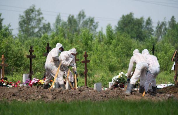 ВПетербурге откоронавируса скончались 26 человек