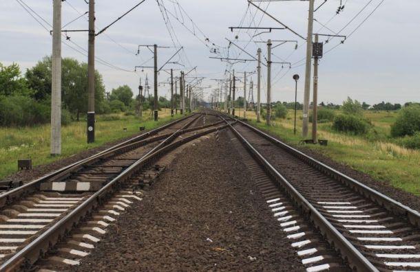 Электричка изПавловска сбила 26-летнюю девушку
