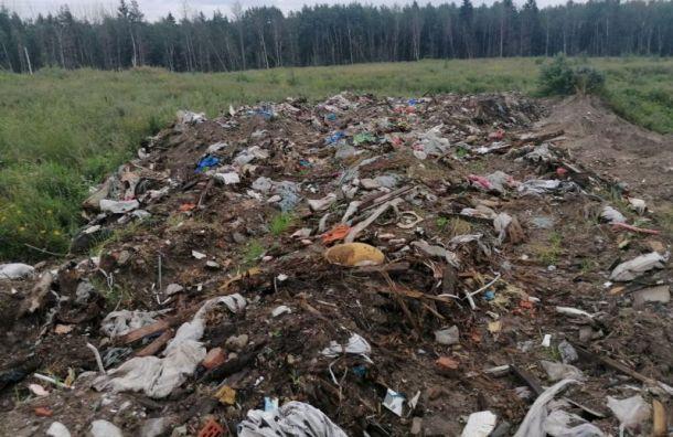 Петербургский мусор продолжает гнить наРжевском полигоне