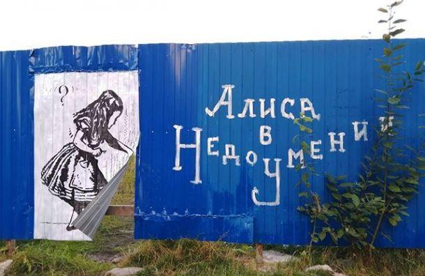 Алиса «открыла портал» на«сказочный» пустырь наПарнасе