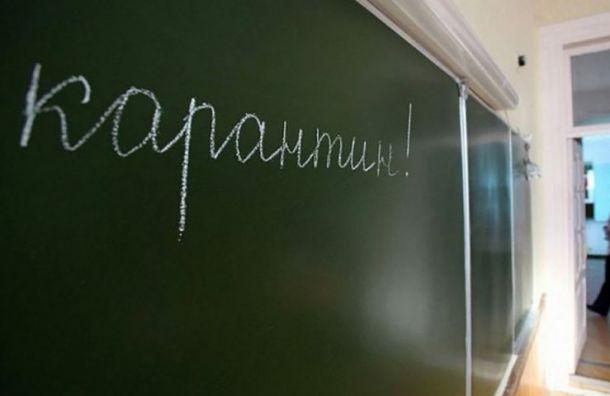 Коронавирус проникает вшколы: вПетербурге 26 классов ушли накарантин