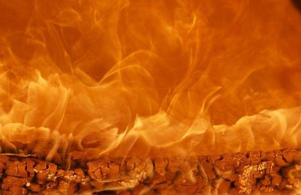 Эвакуировали 150 человек изгорящего общежития Политеха