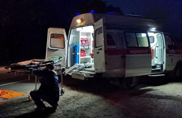 Водитель Renault сбил молодую женщину натрассе «Скандинавия»