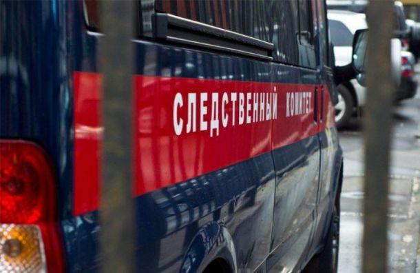 Уголовное дело возбудили после обрушения пешеходного перехода вгороде Ступино