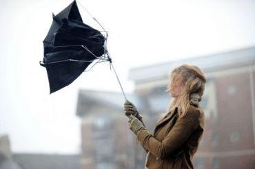 МЧС предупреждает: вовторник вПетербурге будет сильный ветер